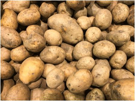 Potates