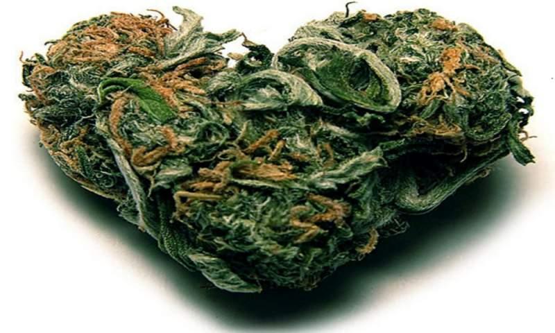 marijuana-heart