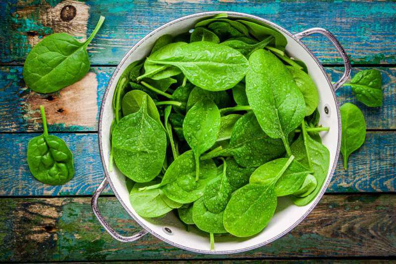 raw-fresh-spinach-with-drops-in-a-colander