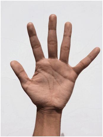 Finger Five