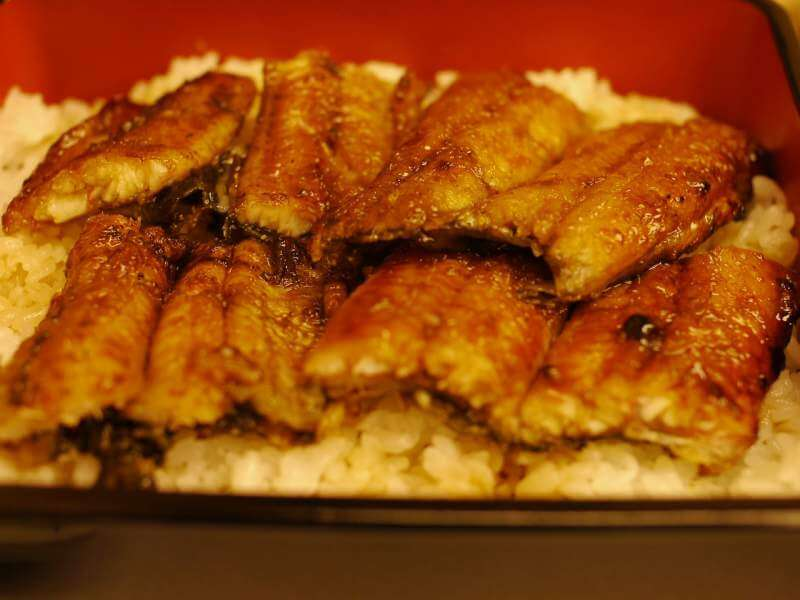 eel-broiled-food
