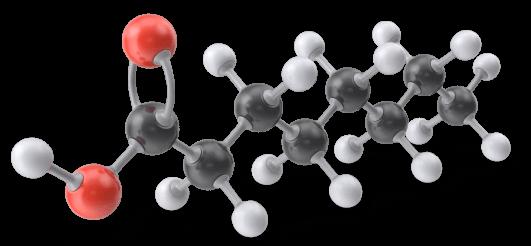Caprylic-Acid-Molecule
