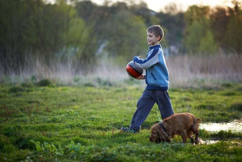 boy-with-a-ball-walking-dog