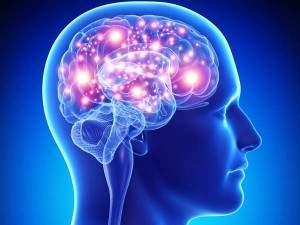Neuroprotective Properties