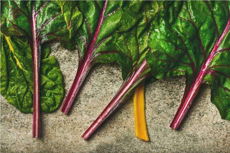flat-lay-of-fresh-green-leaves-of-swiss-chard
