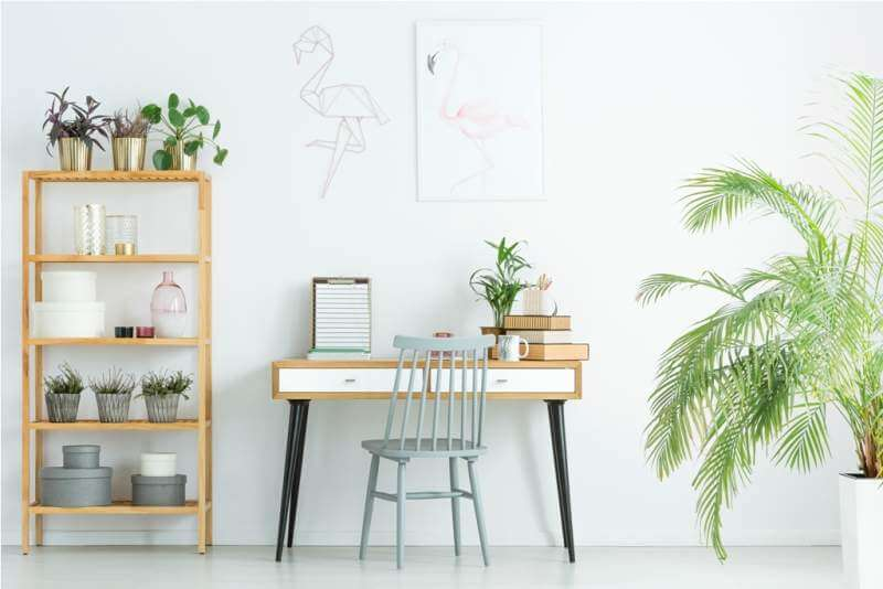 home-office-with-plants