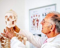 bones-study