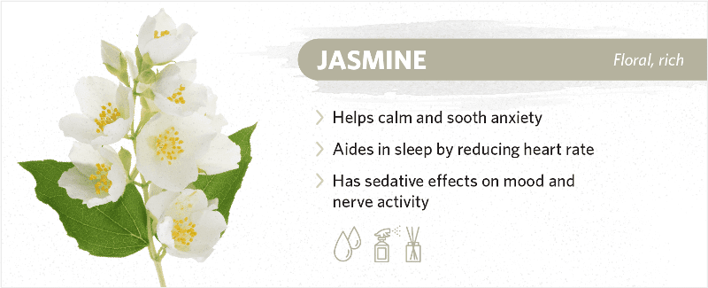 scents-to-help-you-sleep-jasmine