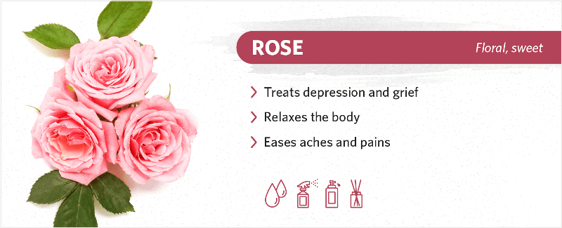scents-to-help-you-sleep-rose