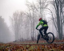 mountain-biker-cycling-on-trail-in-woods