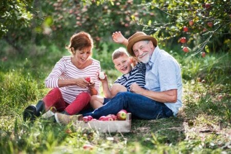 a-senior-couple-with-small-grandson-in-apple