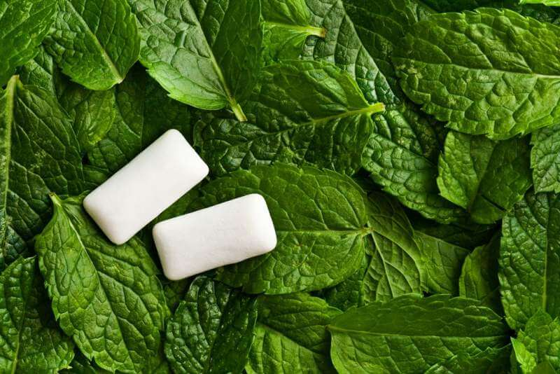 mint-leaves-and-chewing-gum