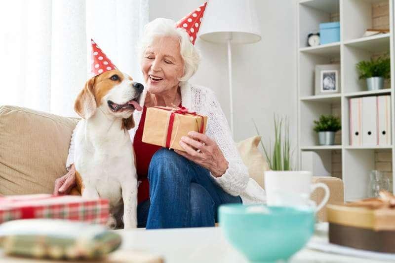 cheerful-senior-woman-congratulating-dog